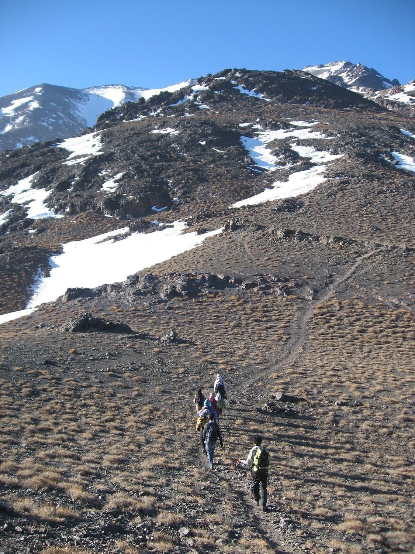 یال اصلی قله