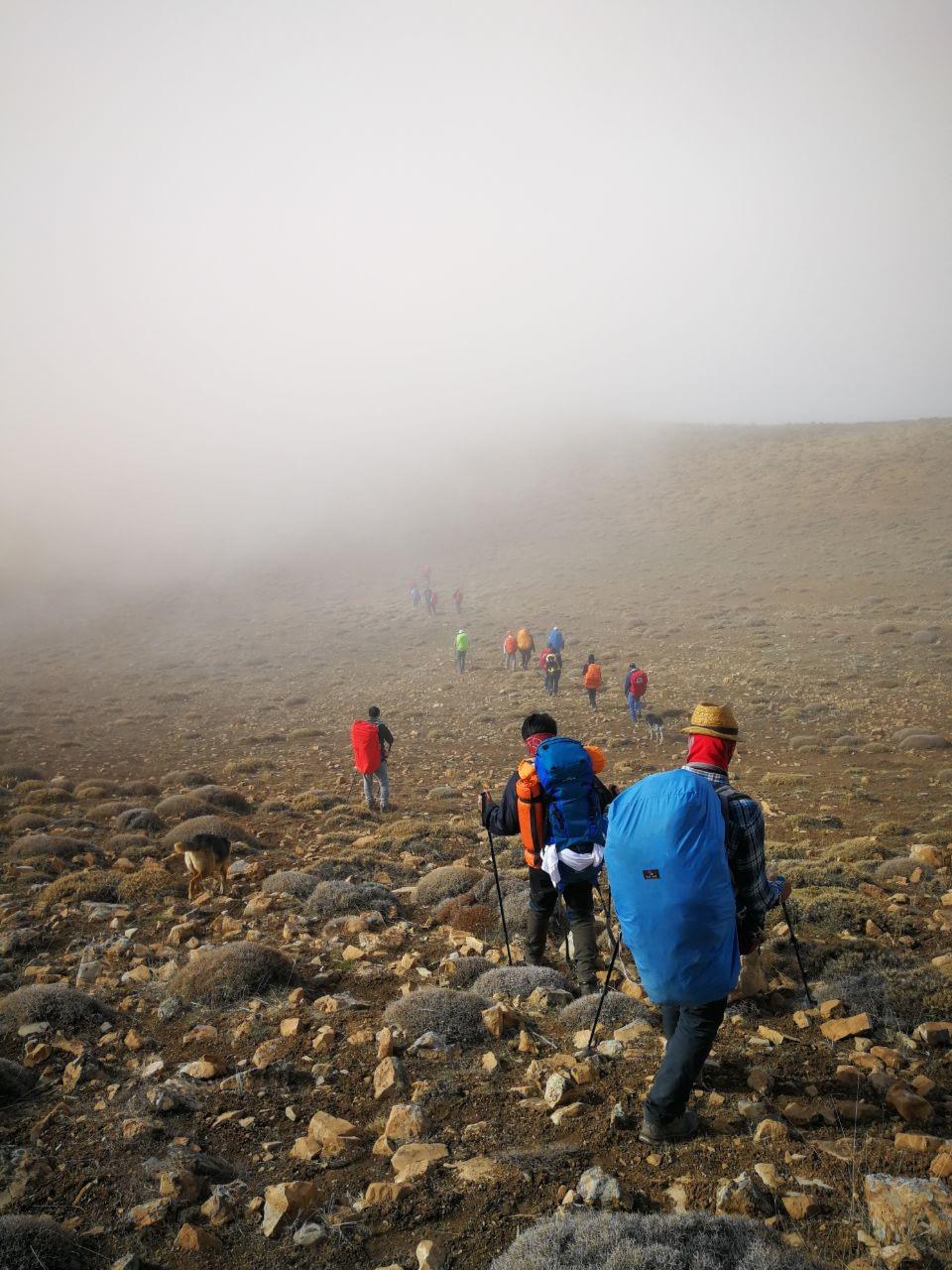 گروه در حال ورود به مه